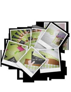 polaroid tuinvergroeningsactie